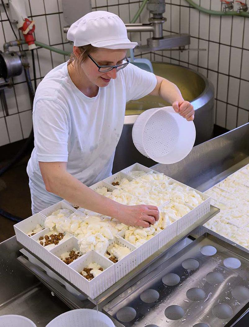 Käserin Karo macht in der Käserei Camembert