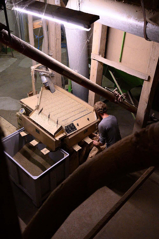 Philipp nimmt einen vollen Sack mit Getreide von der Maschine