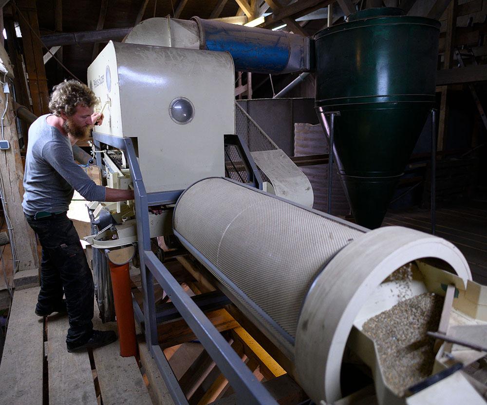 Philipp kontrolliert eine Maschine, die das Getreide sortiert