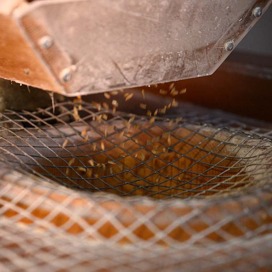 Mehl mahlen in der Mühle