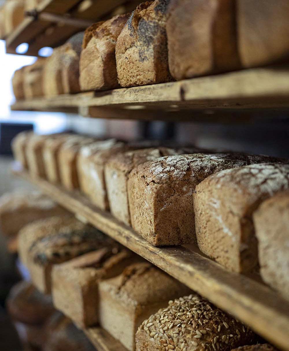 Ein volles Regal Brote in der Backstube