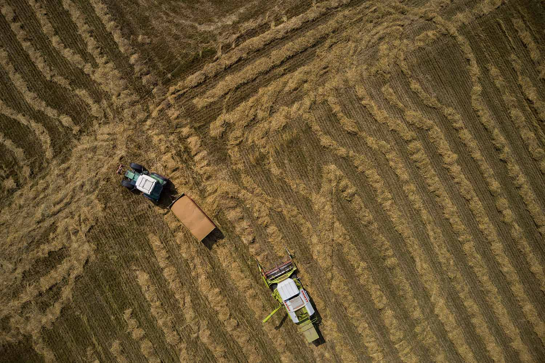 Philipp fährt das geerntete Getreide vom Feld
