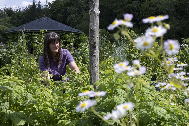 Gärtnerin Petra Panthel auf ihrem Feld