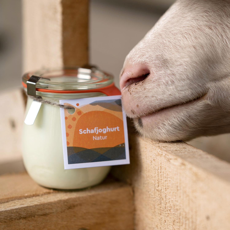 Joghurt aus Schafmilch