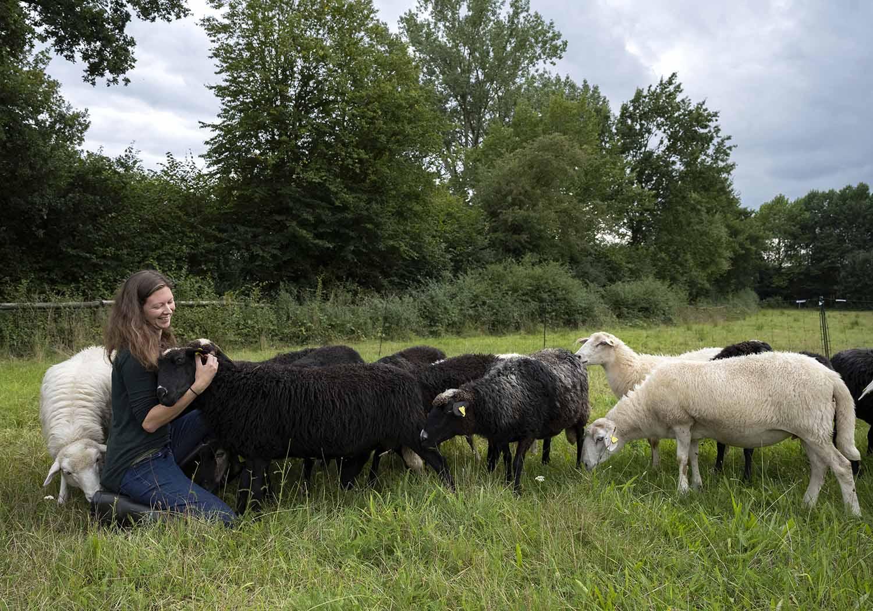 Milchschäferin Sandra von Plutow mit ihrer Schafherde auf der Weide