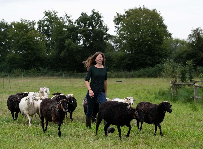 Milschäferin Sandra führt ihre Herde Krainer Milchschafe zum Melkstand