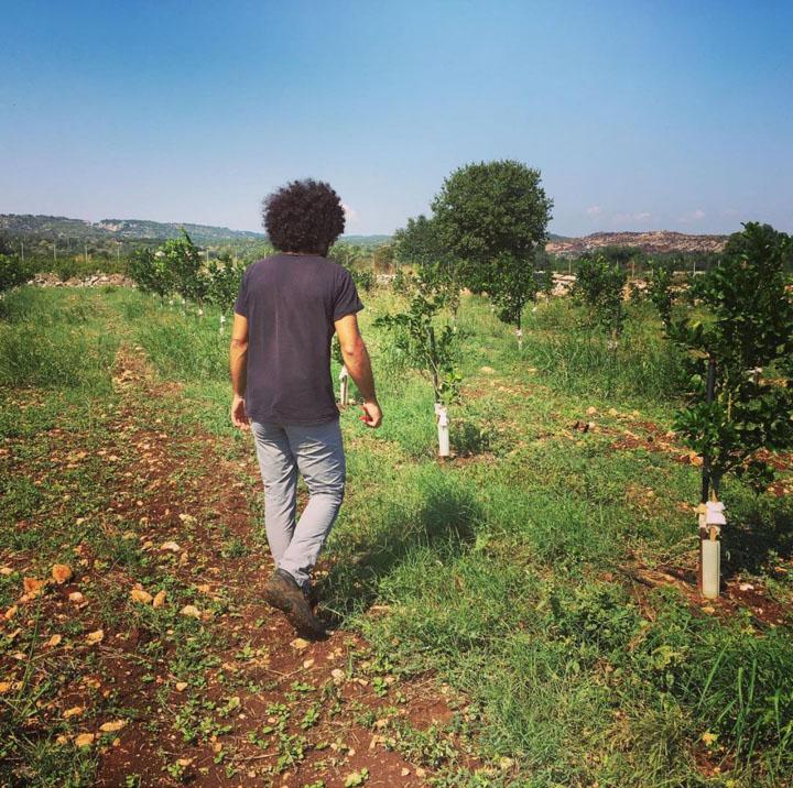 Renato geht über die Felder seiner Zitrus-Plantage in Sizilien