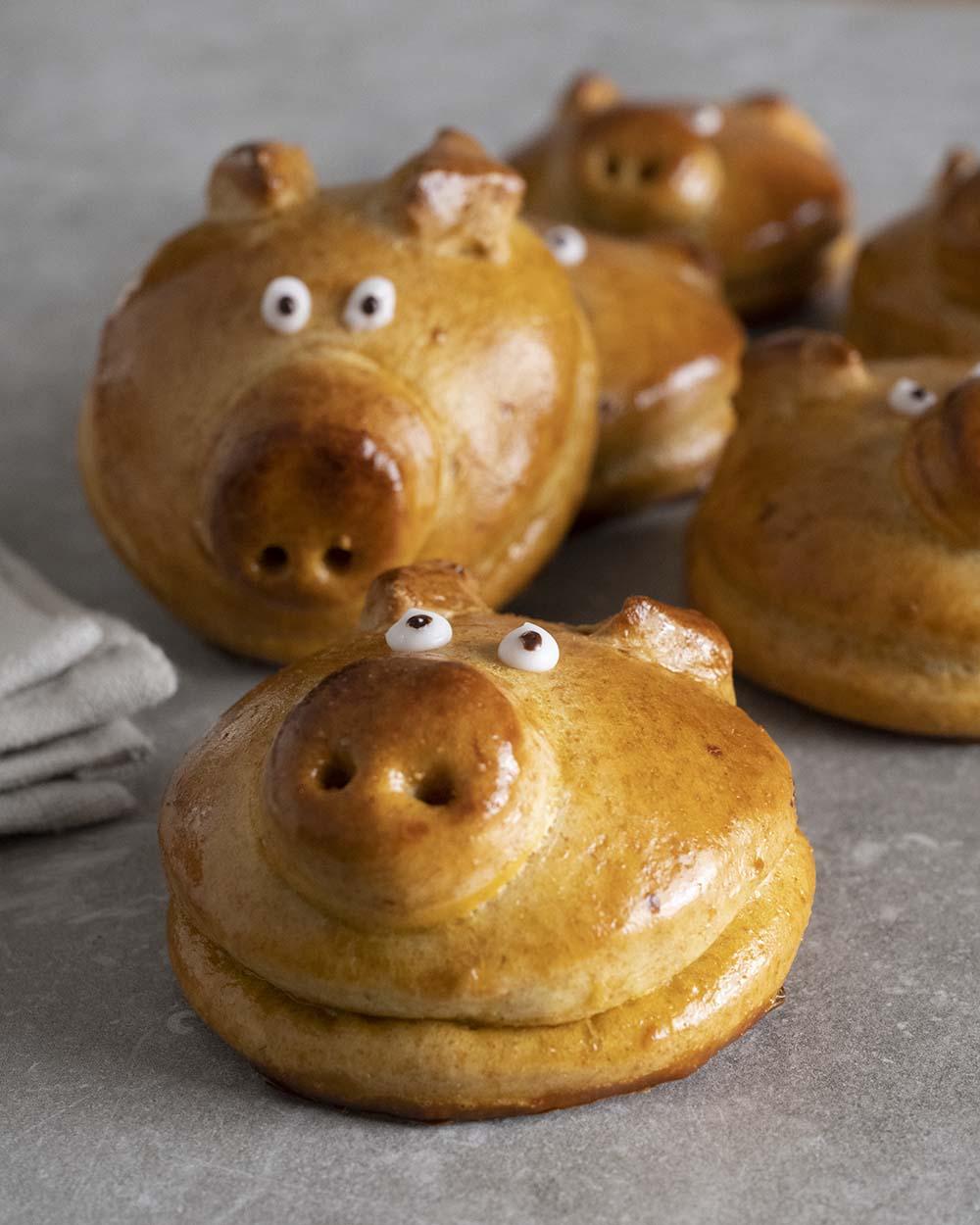 Auf dem Bild sind mehrere Schweinchen zu sehen. Wir haben auf die Nasenlächer des voeren Schweinchens fokussiert.