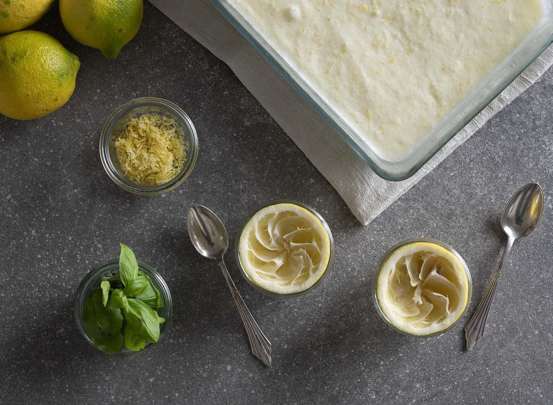 Wir haben die Schale mit gefrorenem Zitronen-Eis aus dem Kühlschrank geholt. Davor sind zwei Schalen ausgepresste Zitronen zu sehen, in denen wir die Kugeln Eis anrichten.