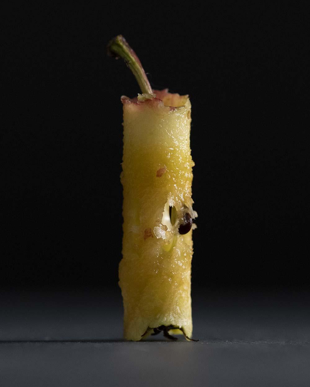 Das Foto zeigt einen Apfelgripsch, denn für unsere Bratäfpel haben wir das Innenleben aus den Äpfeln ausgestochen.