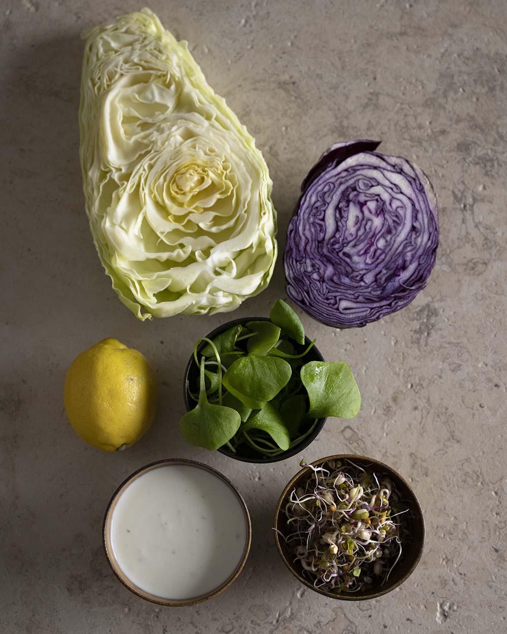 Zutaten für die vegetarische Füllung, die wir in unser Fladenbrot geben. Auf dem Bild zu sehen sind eine Zitrone für das Dressing, das Dressing, Sprossen, Salat, Rotkohl und Weißkohl.