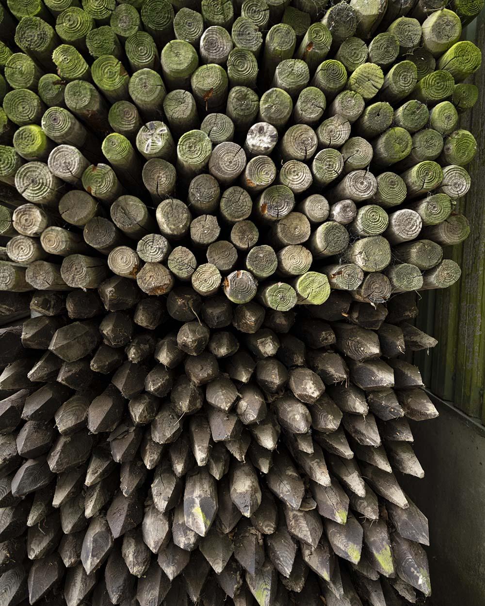 In einem Regal liegen viele Holzstäbe. Sie dienen zur Befestigung der Baumstämme, an denen die Bäume wachsen.