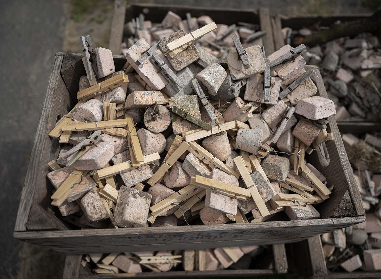 In einer Kiste liegen Steine mit Wäscheklammern. Sie bringt Obstbauer Cord Lefers an den Seitenzweigen der Obstbäume an, damit sie in einer bestimmten Form wachsen.