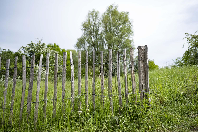 Ein offener Holzzaun, der den Freilauf der Tiereim Tierpark Arche Warder symbolisiert.