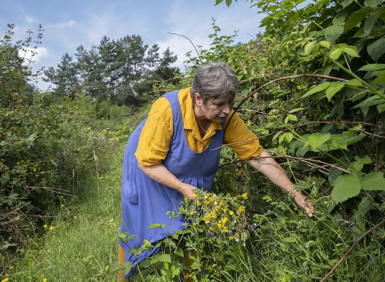 Birgit Wahlen pflückt einen Strauß Wildblumen.