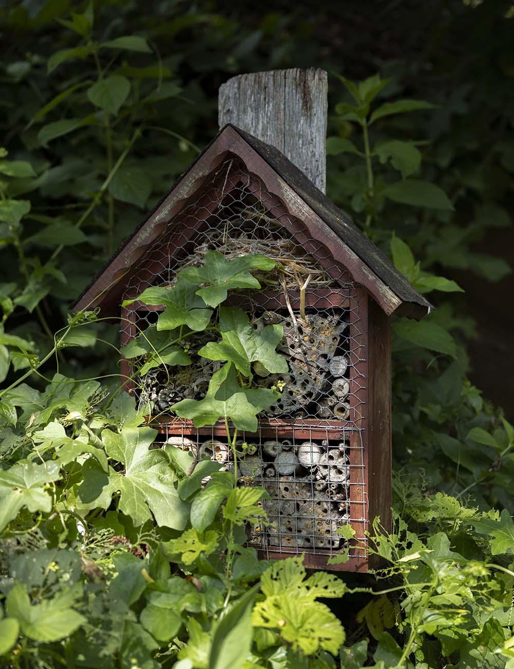 Im Garten auf dem Obsthof Wahlen steht ein Insektenhotel. Außerdem finden sich hier diverse Vogelhäuser. Artenschutz und Umweltschutz ist auf dem Obsthof groß geschrieben.