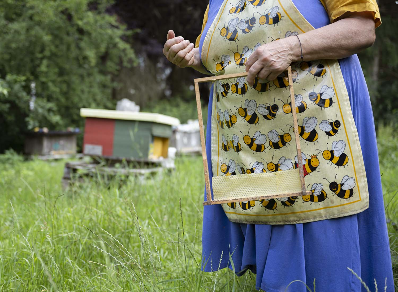 Birgit Wahlen imkert wesensgerecht und damit nach den Richtlinien von Demeter. Das Foto zeigt ein Close-Up einer Wabe, die sie in den Händen hält. Im Hintergrund sind die Bienenbeuten zu sehen.