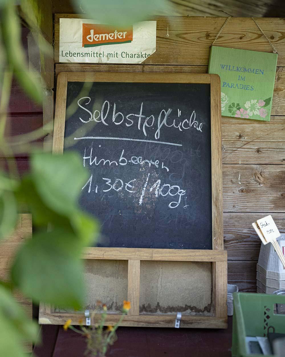 In der Gärtnerei, in der wir unsere Himbeeren pflücken, steht eine Kreidetafel an eine Wad gelehnt. Darauf hat die Gärtnerin die Preise für die selbstgepflückten Himbeeren geschrieben.